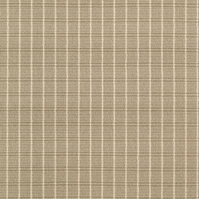 Familiar Frame in Muslin - Carpet by Mohawk Flooring