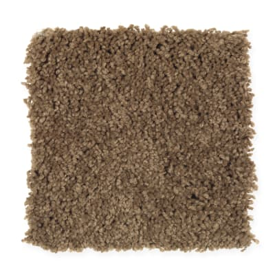 Visual Comfort in Baked Scone - Carpet by Mohawk Flooring
