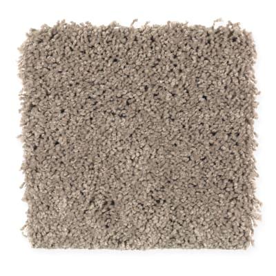 Emerging Image II in Dry Gourd - Carpet by Mohawk Flooring