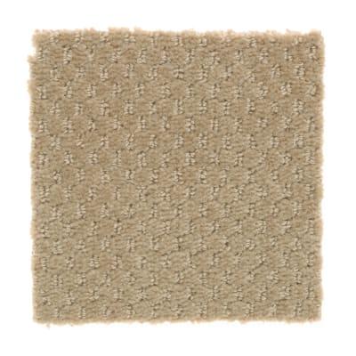 Star Performer in Macadamia - Carpet by Mohawk Flooring