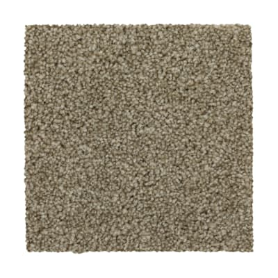 True Harmony in Griffin - Carpet by Mohawk Flooring