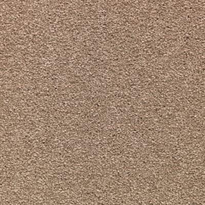 Striking Option in Mushroom Cap - Carpet by Mohawk Flooring