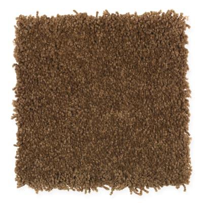 Coastal Path II in Treasure Chest - Carpet by Mohawk Flooring