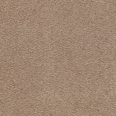 Awaited Bliss in Wildwood - Carpet by Mohawk Flooring