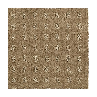 Invigorating in Woodland - Carpet by Mohawk Flooring