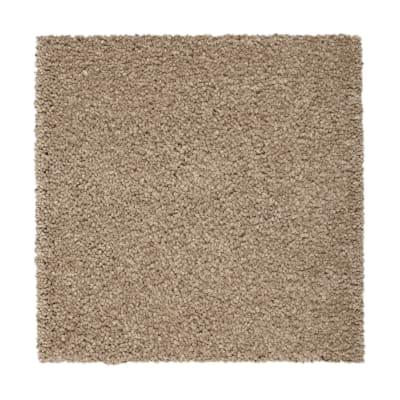 Pure Comfort in Tudor Brown - Carpet by Mohawk Flooring