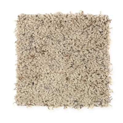 Complete Package  Fleck in Dry Branch - Carpet by Mohawk Flooring