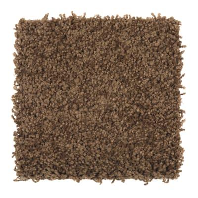 Smart Color in Ginger Jar - Carpet by Mohawk Flooring
