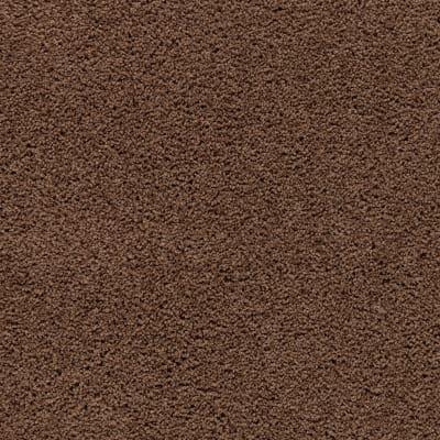 Style Renewal in Adirondack - Carpet by Mohawk Flooring