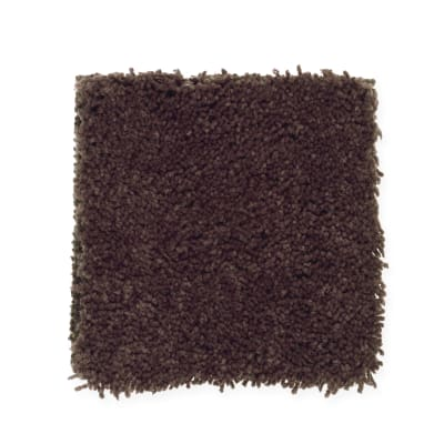 Magical Color in Coffee Bean - Carpet by Mohawk Flooring