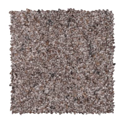 Earthly Details I in Dried Peat - Carpet by Mohawk Flooring