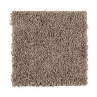 Timeless Idea in Dried Peat - Carpet by Mohawk Flooring
