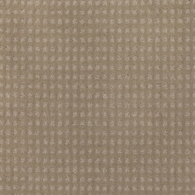 Structural Charm in Seashell - Carpet by Mohawk Flooring