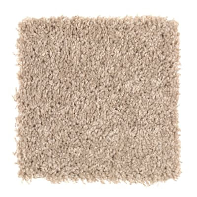 Smart Color in Cobweb - Carpet by Mohawk Flooring