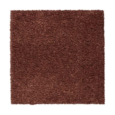 Pure Comfort in Tibetan - Carpet by Mohawk Flooring