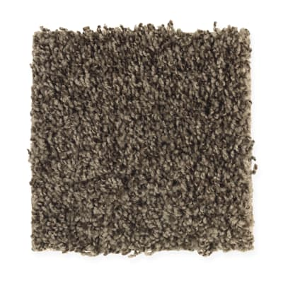 Good Times in Pine Cone - Carpet by Mohawk Flooring