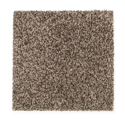 Design Therapy in Enduring Sable - Carpet by Mohawk Flooring