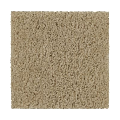 Winsome Crest in Winter Bark - Carpet by Mohawk Flooring