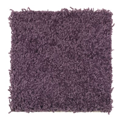 Playful Nature in Purple Parade - Carpet by Mohawk Flooring