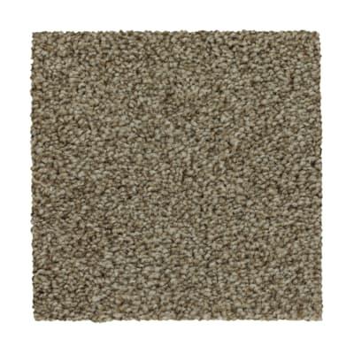 True Harmony in Yorktown - Carpet by Mohawk Flooring