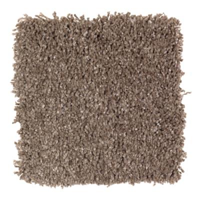 Pleasing Nature in Sapling - Carpet by Mohawk Flooring