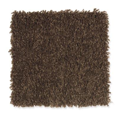 Bellevue Terrace in Pinecone - Carpet by Mohawk Flooring