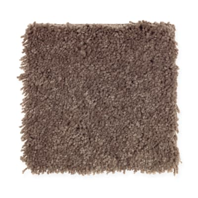 Magical Color in Brown Thrasher - Carpet by Mohawk Flooring
