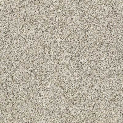 All Set I Net in Atlantic Sand - Carpet by Shaw Flooring