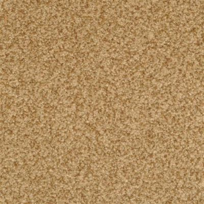 Chromatic Touch in Earth - Carpet by The Dixie Group