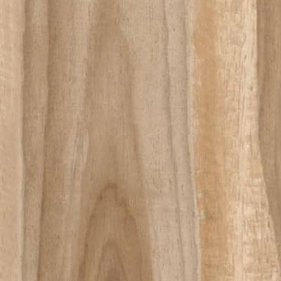 Dreamwood in Natural  6x36 - Tile by Happy Floors
