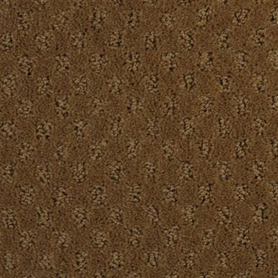 Alcova in Cameo - Carpet by The Dixie Group