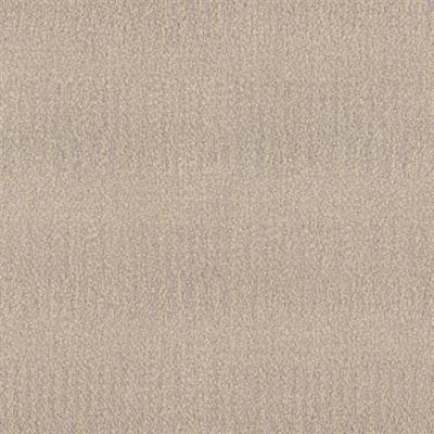 Narrative in Elegant - Carpet by Phenix Flooring