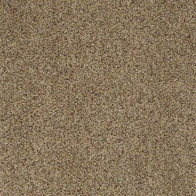 Winner's Circle (a) in White Pepper - Carpet by Shaw Flooring