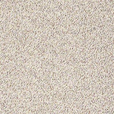 Modern Twist in Tiramisu - Carpet by Shaw Flooring
