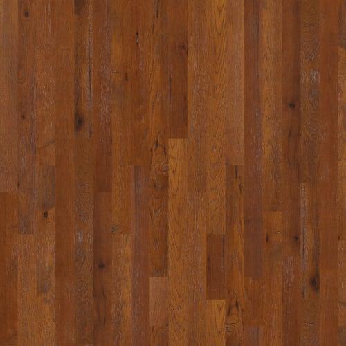 Barlow Road in Caravan - Hardwood by Shaw Flooring