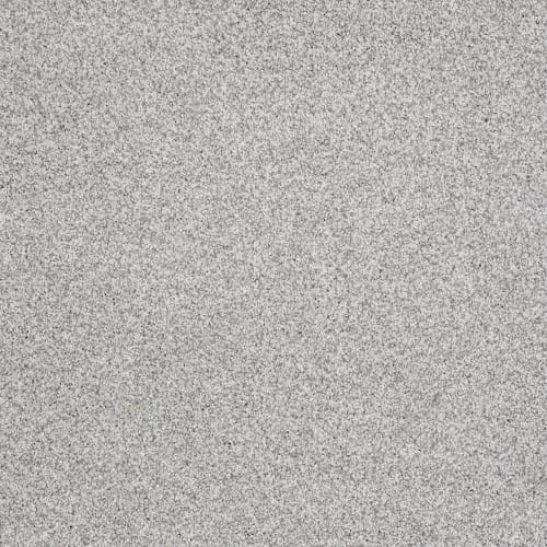 Take The Floor Tonal I in Mystic - Carpet by Shaw Flooring