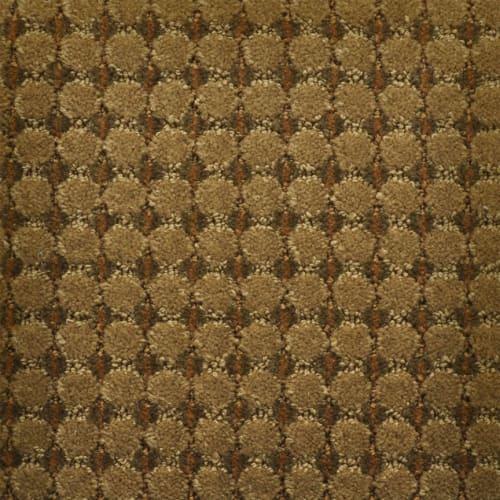 Cervantes in Catalonia - Carpet by Masland Carpets