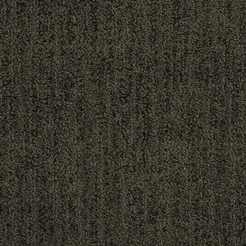 swatch for product variant Timber Ridge