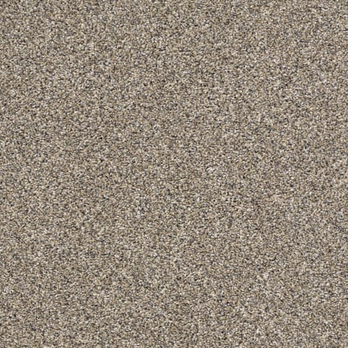 swatch for product variant Pebble Walk
