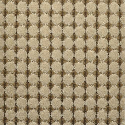 Cervantes in Isabel - Carpet by Masland Carpets