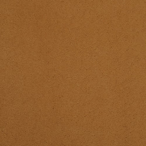 swatch for product variant Warm Beige