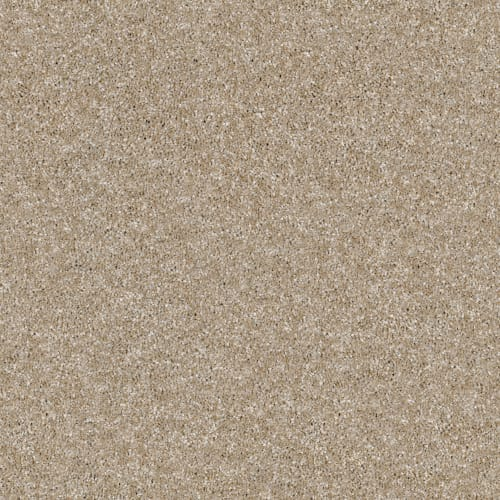 Of Course We Can I 12' in Sand Castle - Carpet by Shaw Flooring
