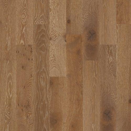 Castlewood Oak in Trestle - Hardwood by Shaw Flooring