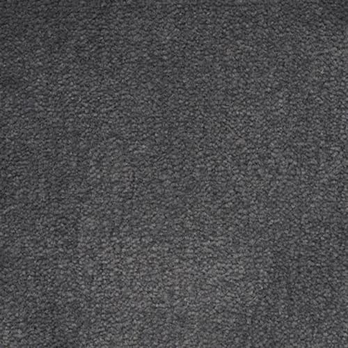 Panache in Carbon - Carpet by Masland Carpets
