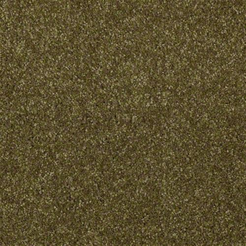 Geneve in Green Apple - Carpet by Shaw Flooring