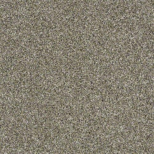 Work The Color in Park Trail - Carpet by Shaw Flooring