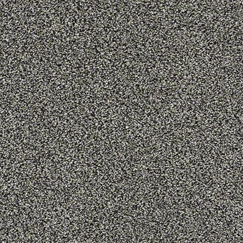 All About It in Meteorite - Carpet by Shaw Flooring