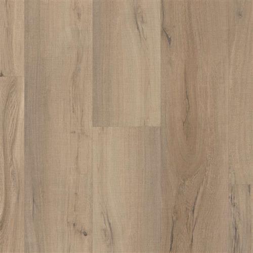 Endura Plus in Driftwood - Vinyl by Shaw Flooring