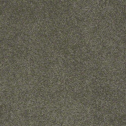 Cooper in Bulldog - Carpet by Shaw Flooring
