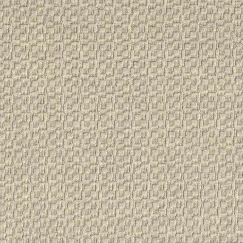 Orbit in Ivory - Carpet by Newton
